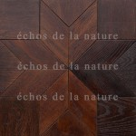 Модульный паркет.echos de la nature (9)